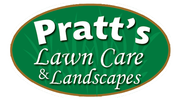 Landscaping and Lawn Care Website Design