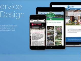Full Service Website Development and Hosting